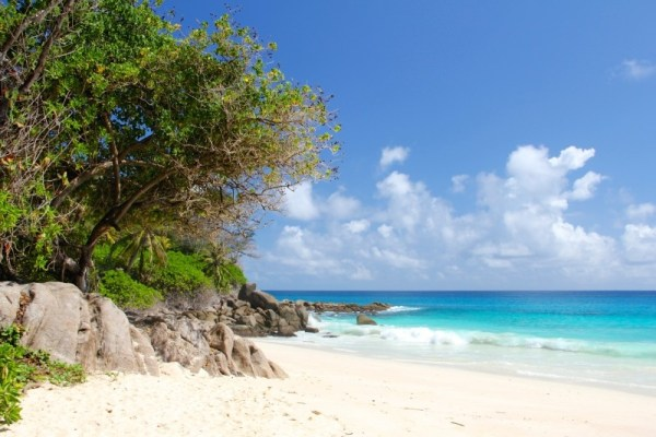 seychelles-beach-beautiful-beach-indian-ocean