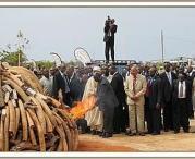 President Kibaki sets ivory on fire