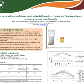 Returns to improved storage and potential impacts on household food security and income: evidence from Tanzania