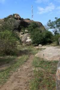 Musanze Cave Safari Rwanda