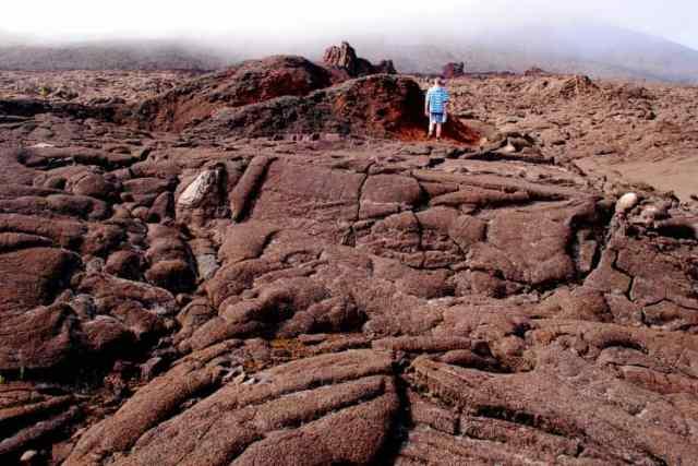 The Reunion Island