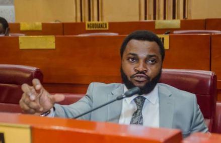 RDC-Sénat: Jean Tshisekedi apporte son soutien «inconditionnel» à la candidature de Reagan Bakonga au poste du questeur adjoint