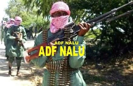 Ituri : 13 otages libérés après une offensive des FARDC à Boga