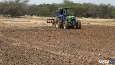 Développent de l'agriculture au Tchad