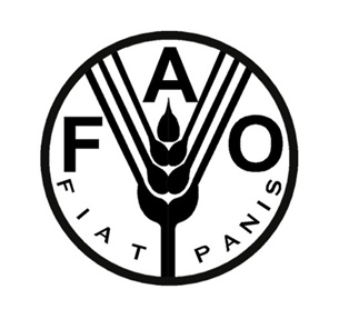 Engaging South Africa on FAO's Internship, Volunteers and