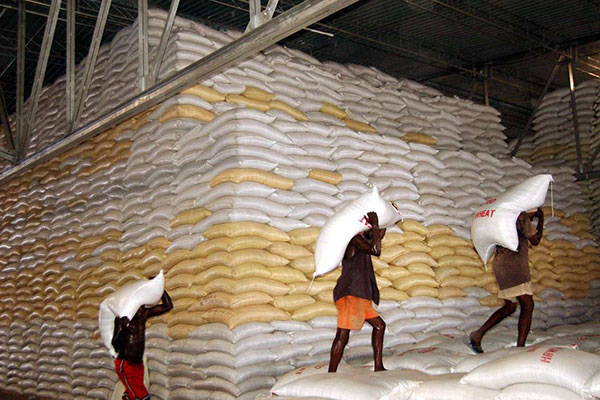 Anxiety Intensifies Over Rising Wheat Imports to East Africa