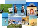 Le tourisme tunisien a terminé l'année 2011