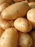 Plusieurs agriculteurs de la région de Boussalem dans le gouvernorat de Jendouba ont jeté des quantités de pommes de terre suite