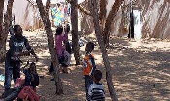 L'une des priorités urgentes du Haut comité pour les réfugiés ( HCR) est de protéger les droits de tous les enfants. Pour ce faire