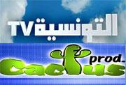Le journal le Maghreb a affirmé qu'un accord a été trouvé entre Sami Fehri et Slim Riahi au sujet de la chaine satellitaire Attounsya . L'accord