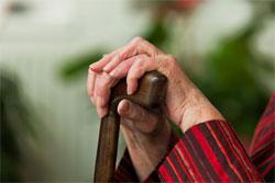 Le taux des personnes âgées en Tunisie devrait atteindre 11 % en 2014 et de 15 % en 2025.