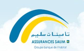 Le Chiffre d'affaires global des assurances Salim