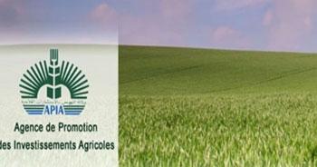 Selon  les données communiquées par l'Agence de promotion des investissements agricoles (APIA)