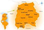 Un troisième cas de typhoïde a été détecté jeudi à Sakièt sidi Youssef dans le gouvernorat du Kef.