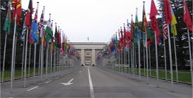 Depuis le démarrage effectif de ses activités en Tunisie (2011) le programme des Nations Unies a fourni aux jeunes tunisiens une