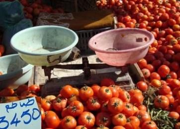 Tunisie : Les tomates à 3 dinars. Qu'est-ce qui se passe ?! Oiddd.jpg?zoom=2