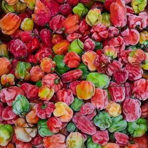 Scotch Bonnet African Fresh Red Pepper (1 kg)