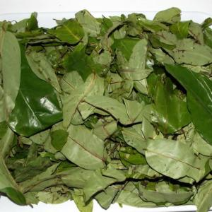 Dried Oha leaf 1 packet