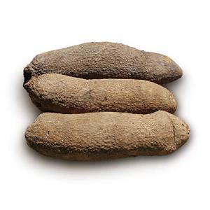 1 Tuber of Ghana yam 2.2kg-2.5kg