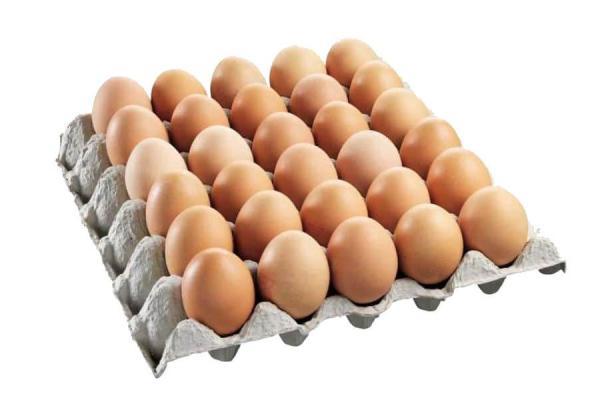 Organic Local brown eggs X 24