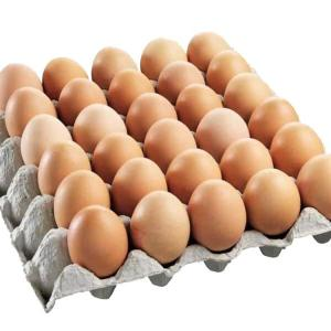 Organic Local brown eggs X 24