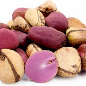 Kola Nuts (Oji Igbo)