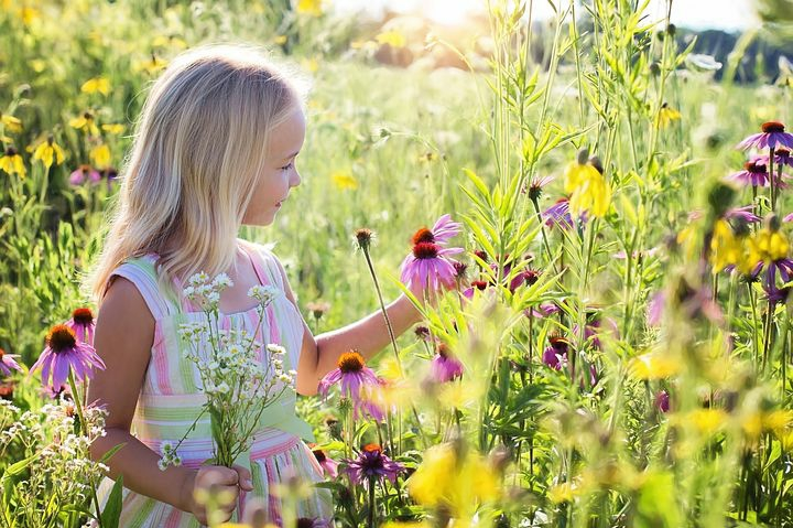 A happy child picking flowers