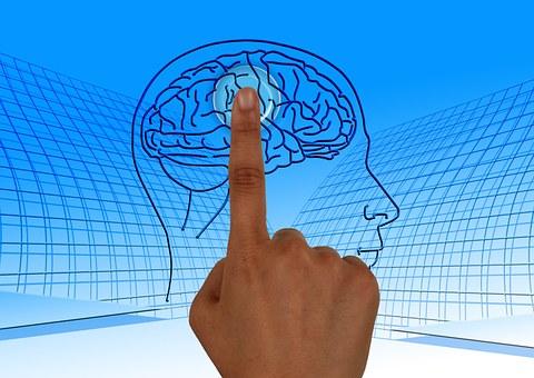 The best Nootropics to increase brain activity