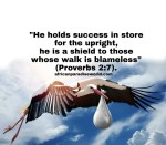 30 Bible Verses About God's Blessings You Can Enjoy In This World