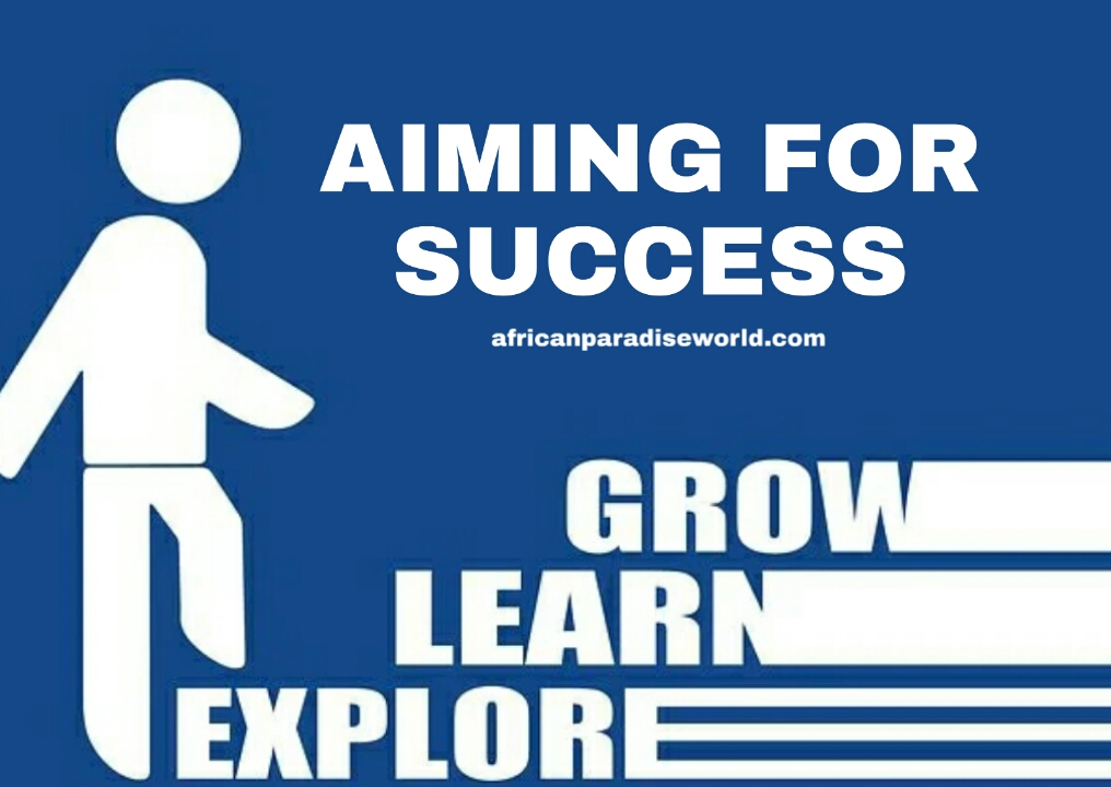 Aiming for success infographic