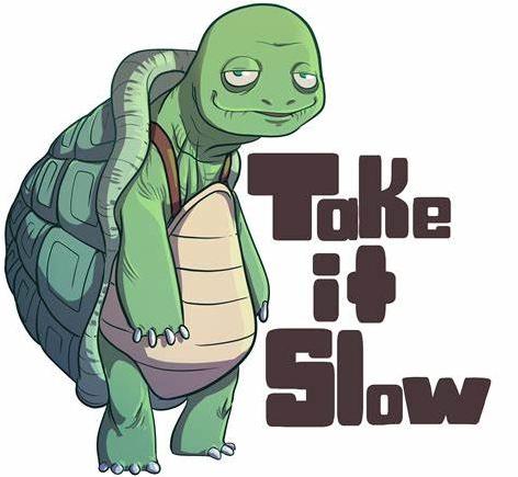 Take it to slow like tortoio