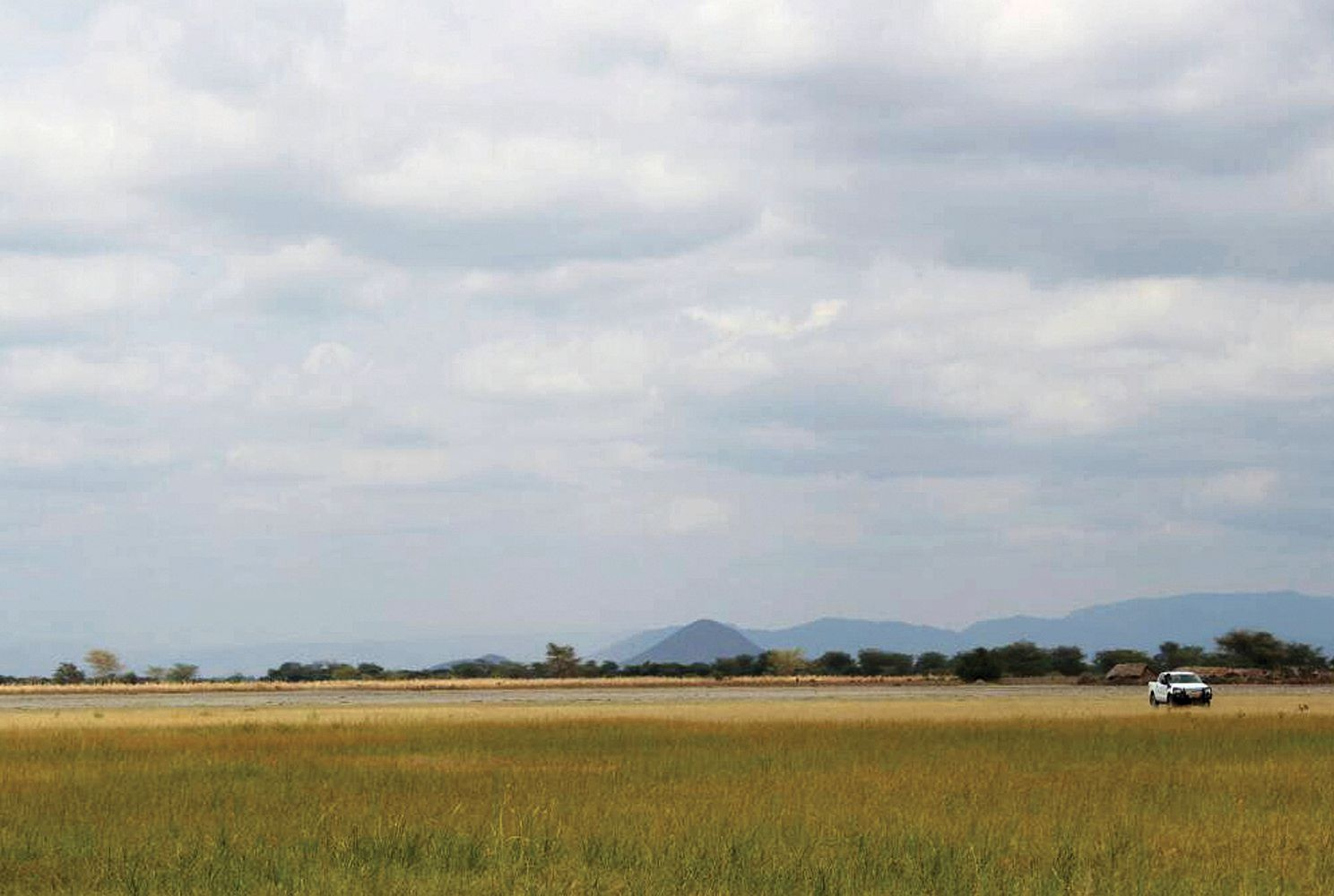 Dry and wet season grazing areas demarcated in Tanzania