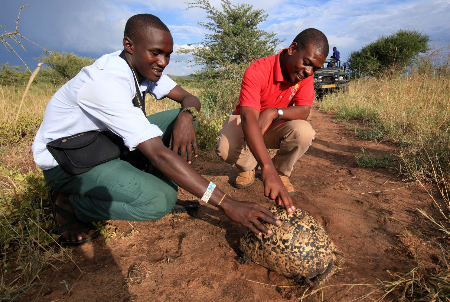 Studying a tortoise during an APW environmental education program