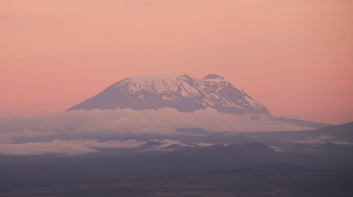 Mt. Kilimanjaro against a pink sky