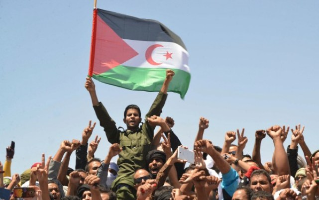 Morocco suspends relations with German over Western Sahara
