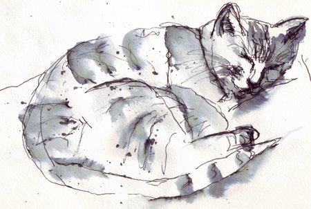 cats3.jpg
