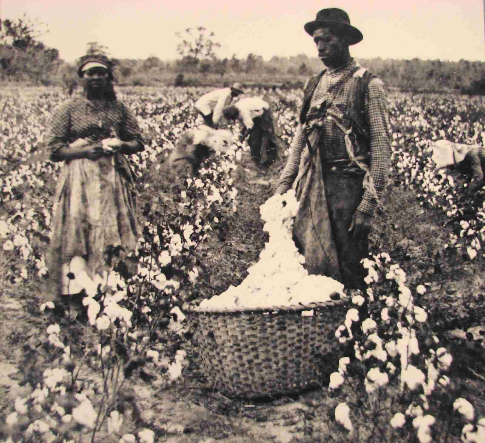 Black History African Aboriginal Traditional Society