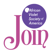 Graphic Join African Violet Society of America