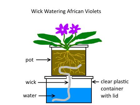 Wick-water diagram