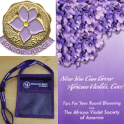 Items for sale in the Member Item Category