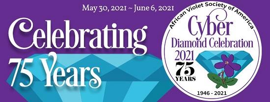 AVSA 2021 Cyber Convention banner