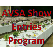 AVSA Show Entries Program Graphic