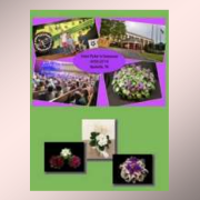 African Violet Society of American 2014 Nashville convention media