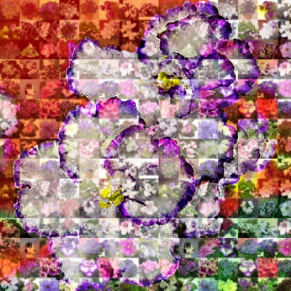Mosaic P1 2