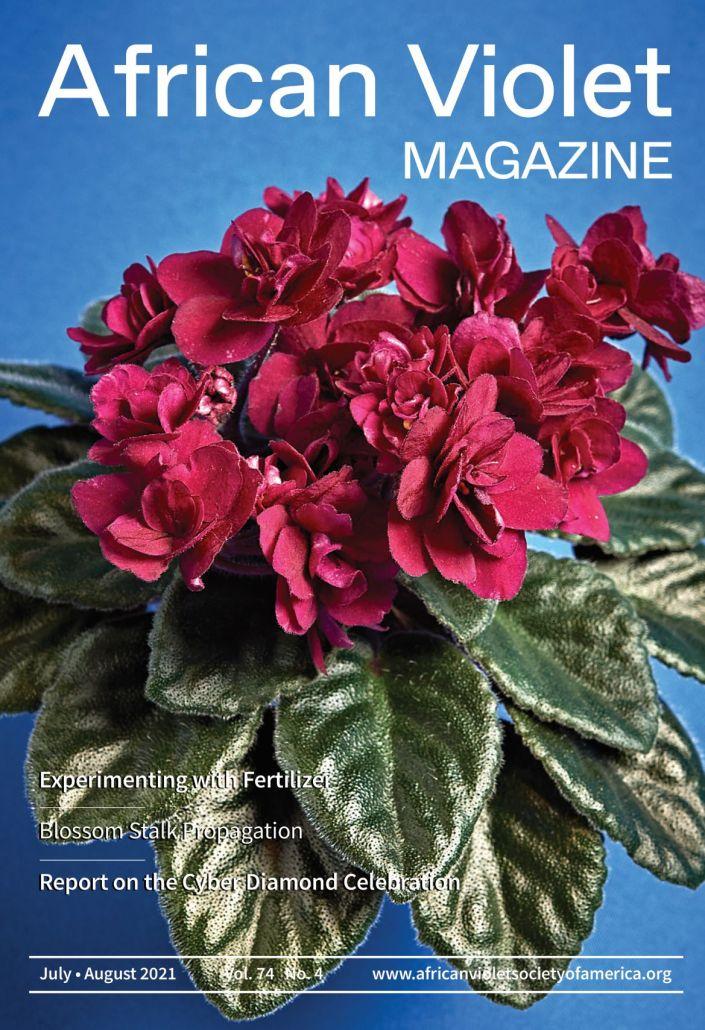 AVM 2021 4 Jul Aug Cover