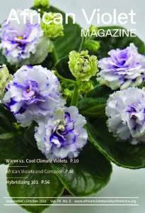 AVM 2021 5 Sep Oct Cover