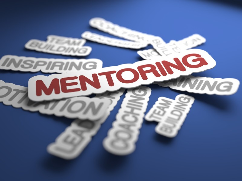 Occasional Mentorship Role