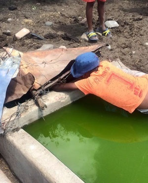 South Africa: Desperate Residents 'Drinking Sewage Water' As Taps Run Dry