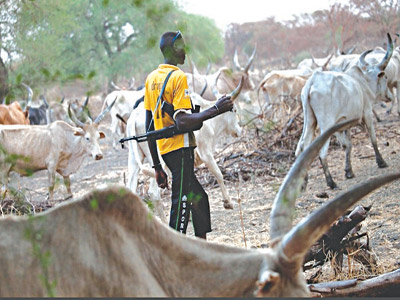 Open Grazing: We Stand By The Position Of The AGF, Group Faults Southern Govs. Declaration