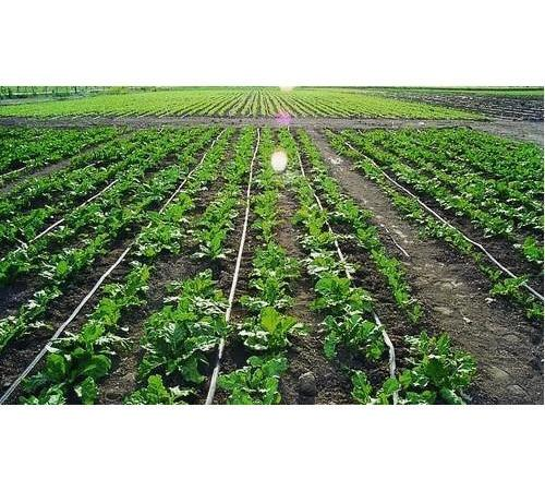 Agriculture: APPEALS embarks on Pre-implementation Support Mission To Project States